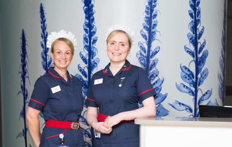 Our Matrons Matron play a key role at our Hospital